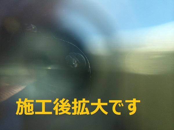 IMG_4748[1]