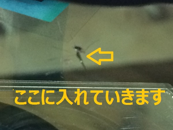 IMG_4757[1]