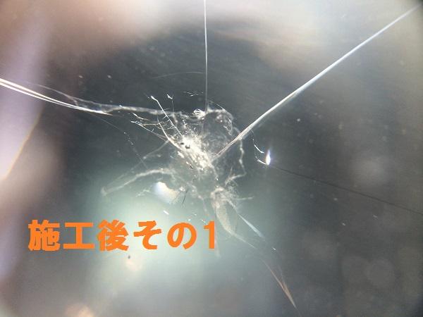 IMG_6493[1]