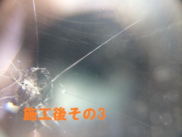 IMG_6495[1]