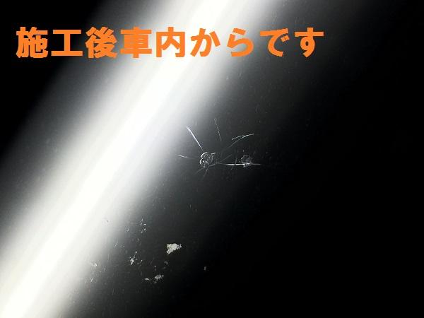 IMG_7377[1]