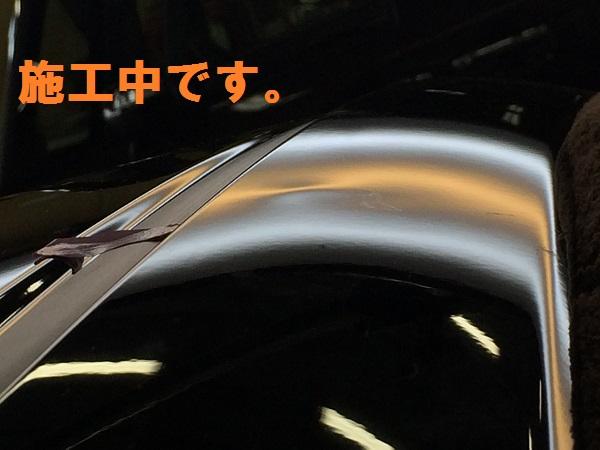 IMG_8376[1]