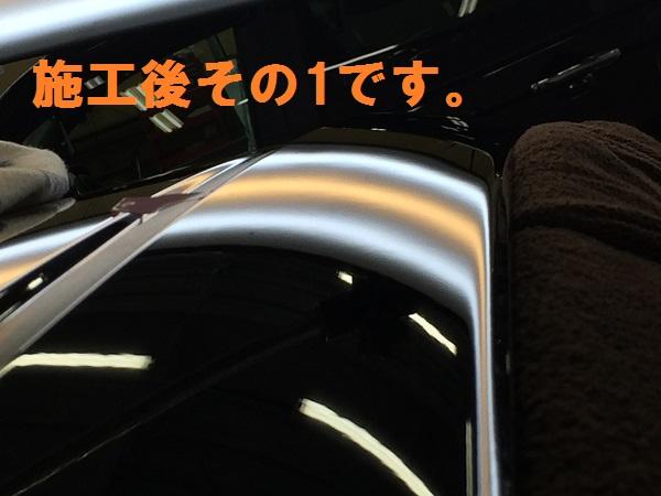 IMG_8379[1]